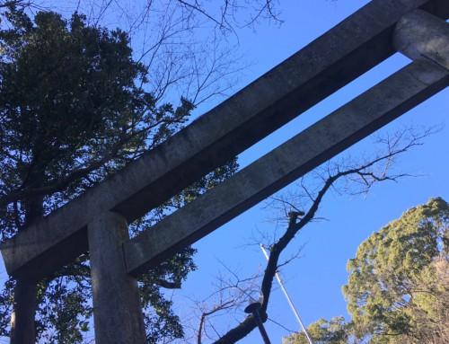 天然温泉つき!箱根のホテル、ヒルトン小田原で年越し♡